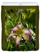 Daylily Picture 494 Duvet Cover