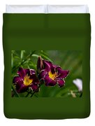 Daylily Picture 526 Duvet Cover