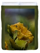 Daylily Picture 558 Duvet Cover