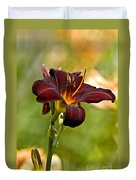 Daylily Pictures 576 Duvet Cover