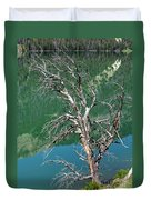Dead Tree At Green River Lakes -wyoming Duvet Cover