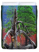 Dead Tree On Cinder At Sunset Crater Duvet Cover