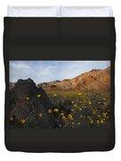 Death Valley Spring 1 Duvet Cover