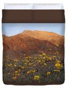 Death Valley Spring 2 Duvet Cover
