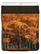 Deciduous Aspen Forest In Fall Duvet Cover