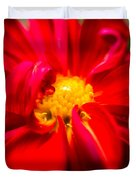 Deep Red Dahlia With Yellow Center Duvet Cover