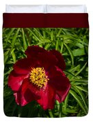 Deep Red Peony With Bright Yellow Stamens  Duvet Cover