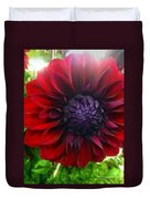 Deep Red To Purple Dahlia Flower Duvet Cover