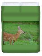 Deer 13 Duvet Cover