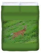 Deer 6 Duvet Cover