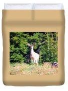 Deer Approaching Duvet Cover