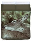 Deer Close-up Duvet Cover