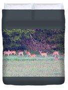 Deer-img-0128-005 Duvet Cover