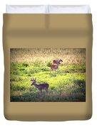 Deer-img-0437-001 Duvet Cover