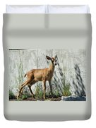 Deer On A Walkabout Duvet Cover