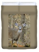 Deer Pictures 445 Duvet Cover