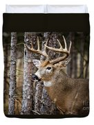 Deer Pictures 508 Duvet Cover