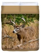 Deer Pictures 525 Duvet Cover