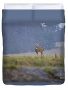 Deer Pictures 527 Duvet Cover