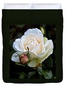 A Rose Of Delicate Beauty Duvet Cover