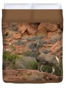 Desert Bighorn Sheep Duvet Cover