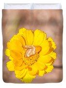 Desert-marigold Moth Duvet Cover