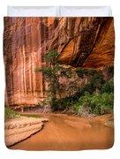 Desert Oasis - Coyote Gulch - Utah Duvet Cover