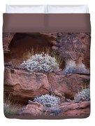 Desert Plant Life Duvet Cover
