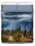 Desert Rains  Duvet Cover