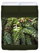 Desert Succulents 2 Duvet Cover