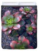 Desert Succulents Duvet Cover