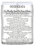 Desiderata On The Piazza Duvet Cover