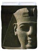 Detail Of Pharaoh Head At Entrance Duvet Cover