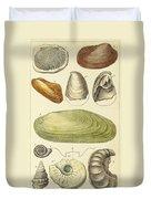 Devonian Fossils, Illustration Duvet Cover