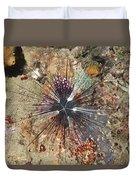 Diadema Urchin Duvet Cover