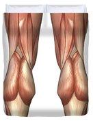 Diagram Illustrating Muscle Groups Duvet Cover