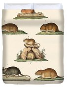 Different Kinds Of Mice Duvet Cover