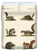 Different Kinds Of Squirrels Duvet Cover