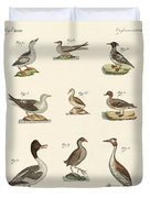 Different Kinds Of Waterbirds Duvet Cover