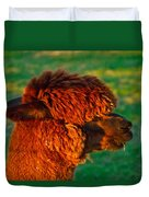 Do You Like My New Haircut Alpaca Duvet Cover