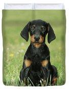 Doberman Pinscher Puppy Duvet Cover