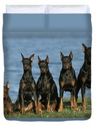 Doberman Pinschers Duvet Cover