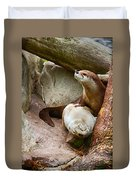Doctor Otter At The Western North Carolina Nature Center Duvet Cover