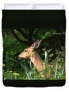 Doe In Tall Grass Duvet Cover