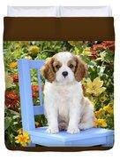 Dog On Blue Chair Duvet Cover by Greg Cuddiford