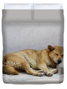 Dog Sleeping Duvet Cover