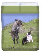 Dogs Playing With Stick Duvet Cover