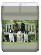 Dogs Sitting On Bench Duvet Cover