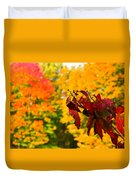 Dogwood And Fall Colors Duvet Cover