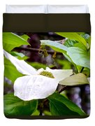 Dogwood In Yosemite Valley-2013 Duvet Cover